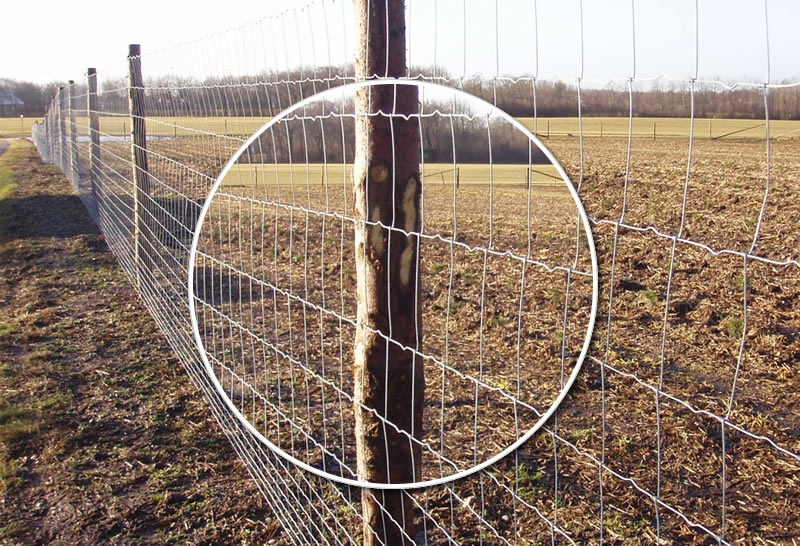 High Tensile Steel Wire Fence