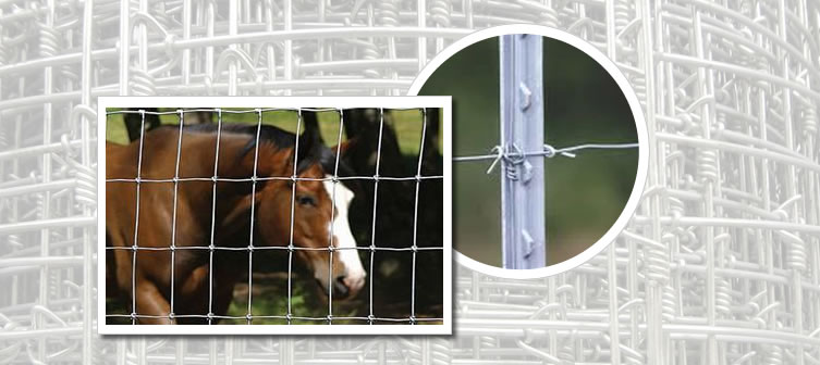 Horse Fencing and Cattle Fencing